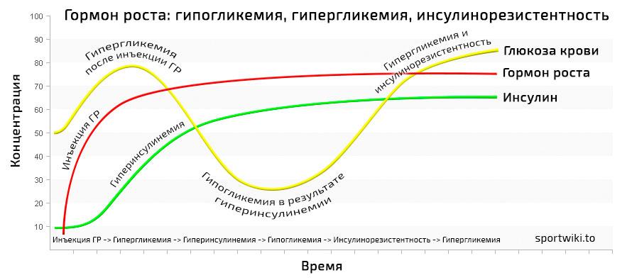 Проверенная схема применения гормонов роста на массу и сушку | курс гормонов роста на сушку и на массу