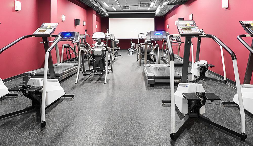 Бизнес-план фитнес-клуба с расчетами: скачать готовый пример