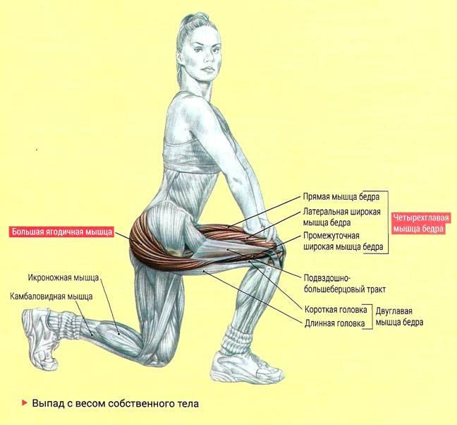 «стульчик у стены» – упражнение для похудения, укрепления мышц ног и ягодиц – счастливая женщина