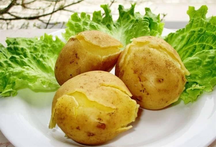 Картошка, польза и вред для здоровья человека, употребляющего его