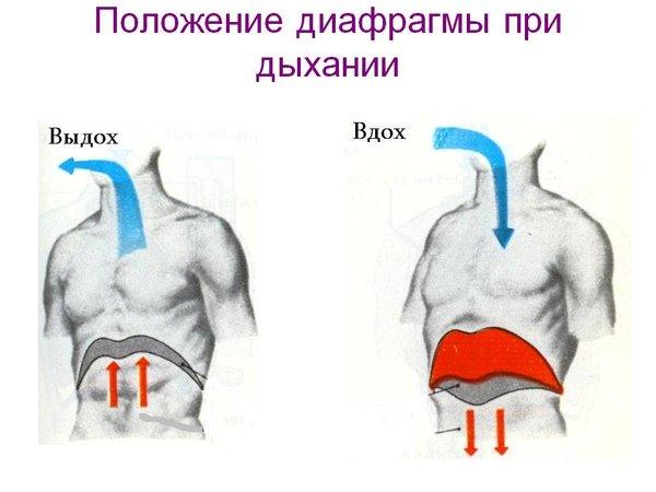 Как дышать, чтобы насытить кровь кислородом?