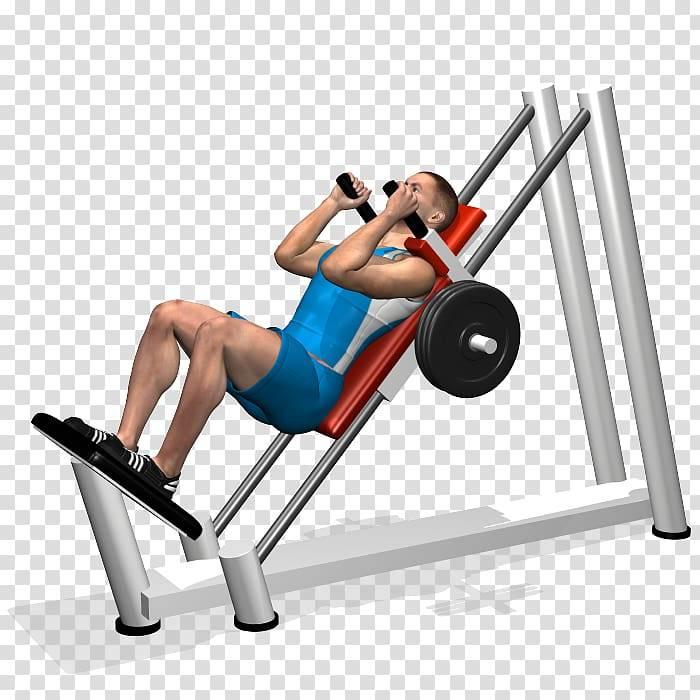 Гакк приседания (гаккеншмидта): техника выполнения и работающие мышцы