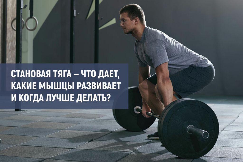 Как увеличить результат в становой тяге: советы от заслуженного тренера рф аскольда суровецкого.