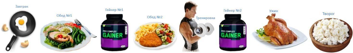 Правильное питание после тренировки для набора мышечной массы: рецепты и меню на неделю