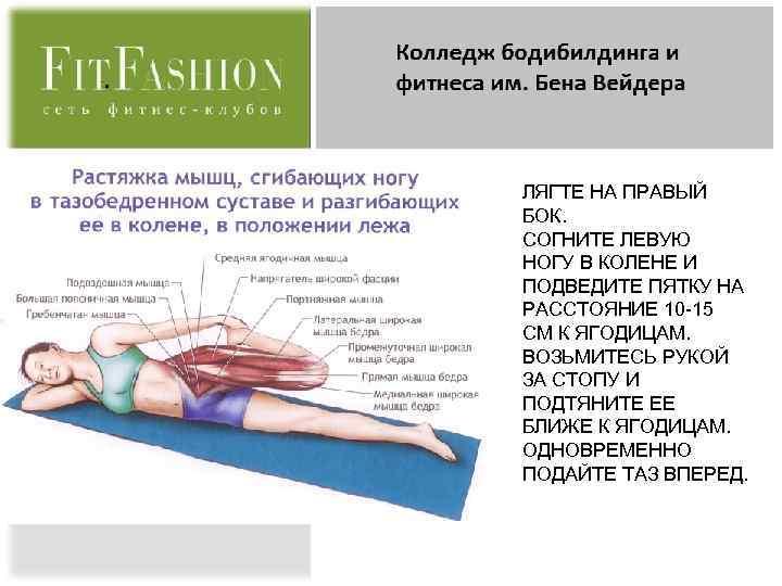 Подвздошно-поясничная мышца – анатомия, функции и комплекс упражнений для растяжки и укрепления