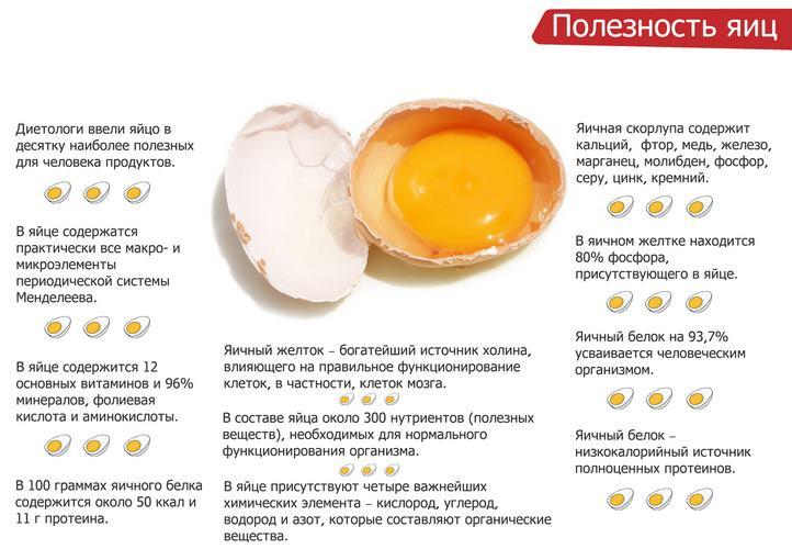Пищевая ценность яйца, правила употребления при похудении