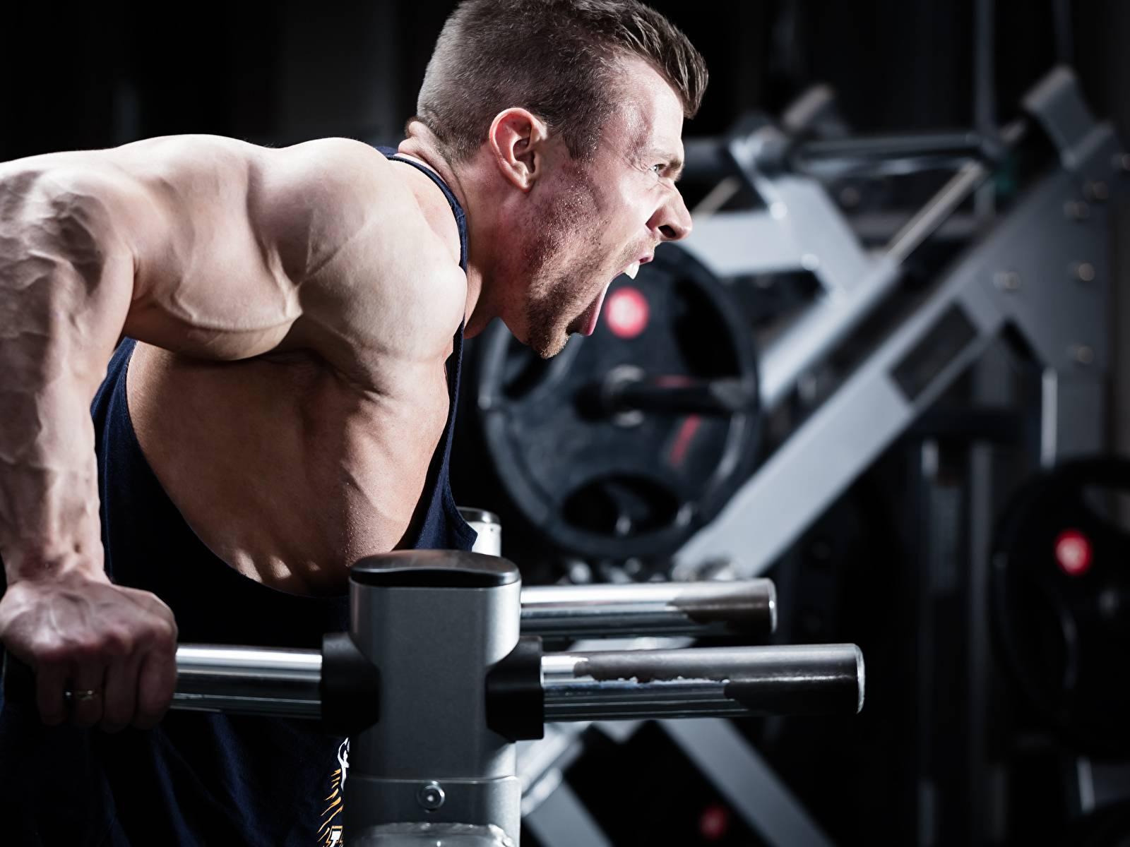 Сколько зарабатывает фитнес-тренер, чем занимается, как им стать