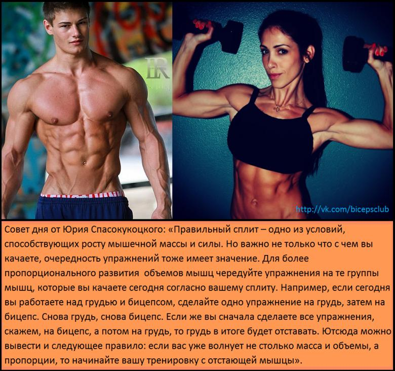 Почему не растут мышцы.