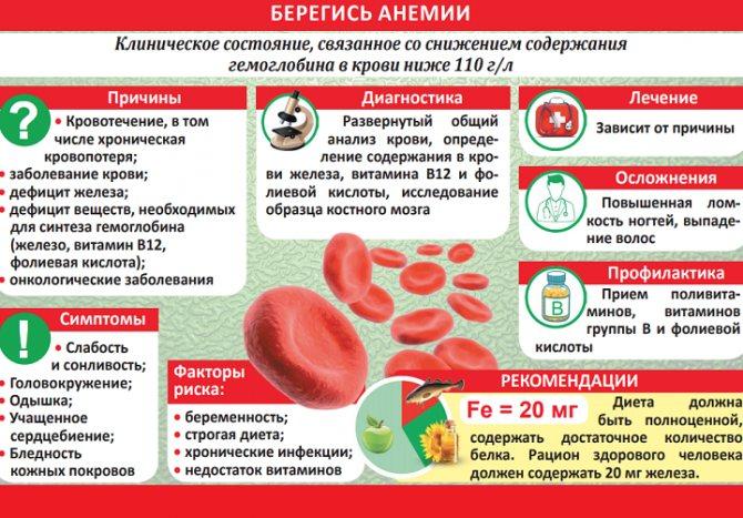 Как повысить гемоглобин? как поднять гемоглобин в домашних условиях? продукты, поднимающие гемоглобин
