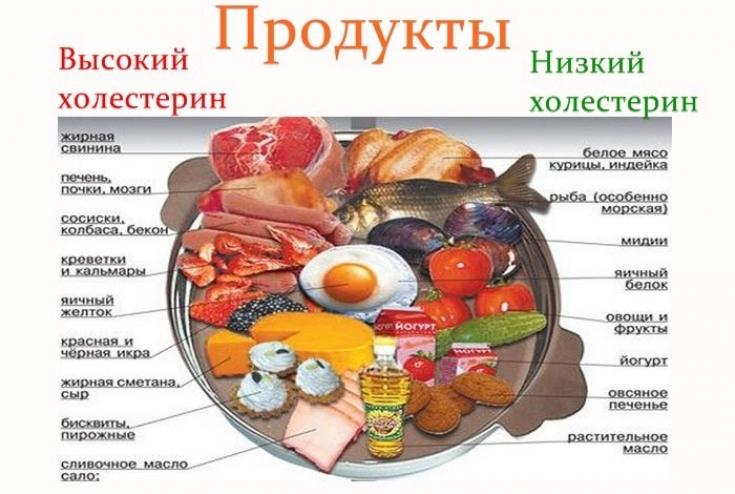 Какие продукты повышают холестерин в крови — список и таблица