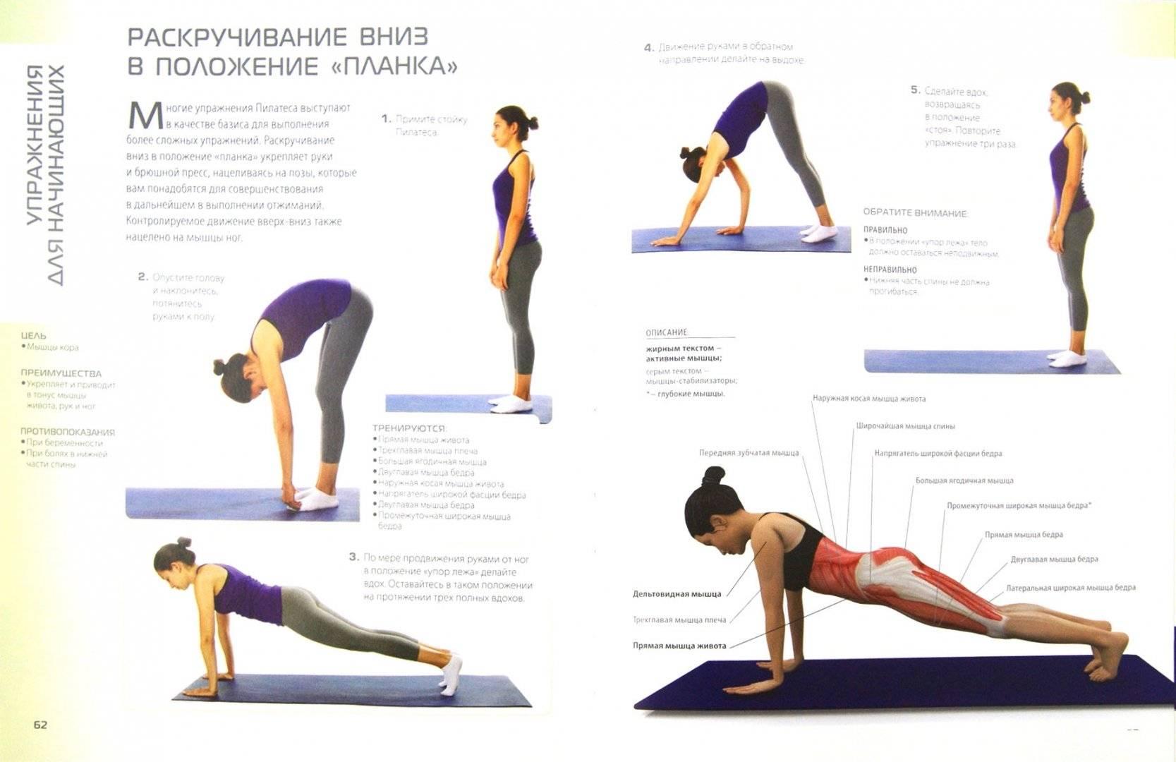 Пилатес дома для похудения - комплекс упражнений для начинающих с видео