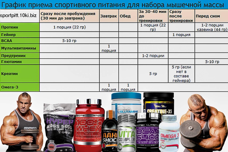Лучший протеин для набора мышечной массы — как выбрать и принимать?