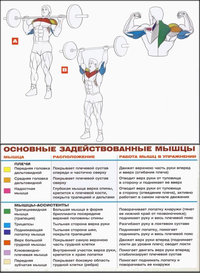Техника рывка штанги: пошаговое пособие для новичков - olympic-lifting