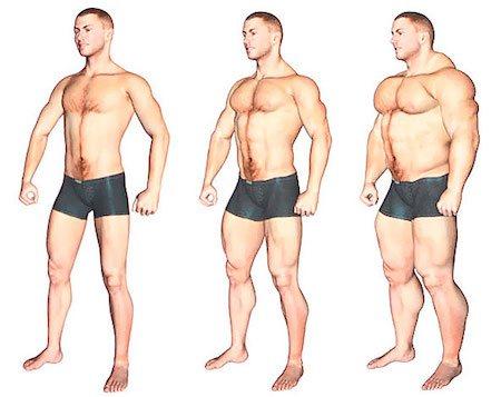 Тренировки для эндоморфа