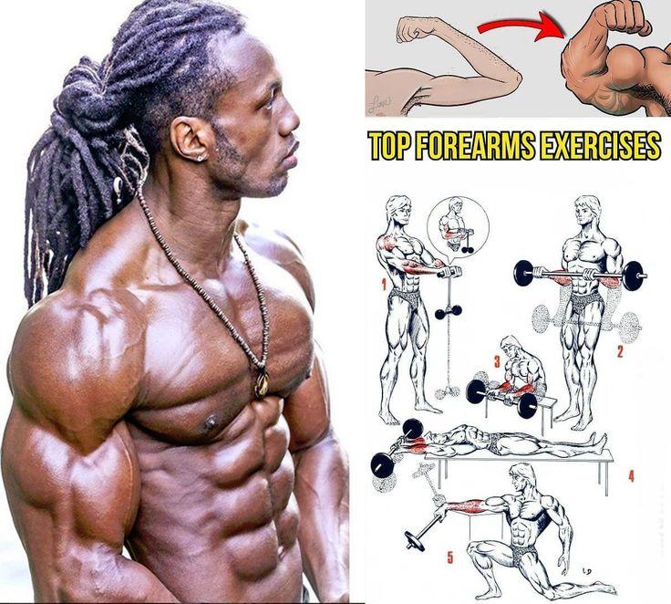 Как прокачать бицепсы в тренажёрном зале: упражнения на бицепс со штангой и гантелями, комплексная тренировка