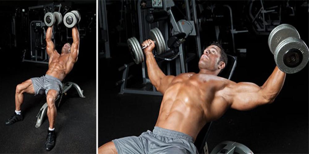 Увлечение изолированными упражнениями. стоит ли?