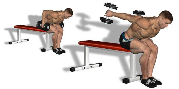 30 самых эффективных упражнений для мышц рук