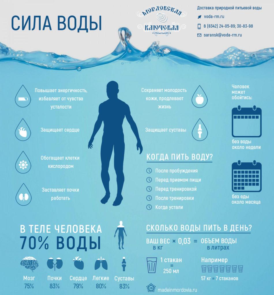 Сколько нужно выпивать воды в день?
