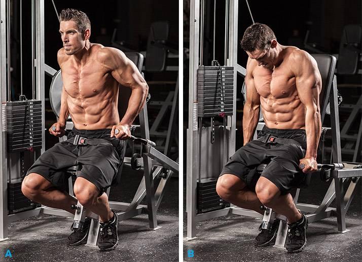 Эффективные упражнения на трицепс в тренажерном зале