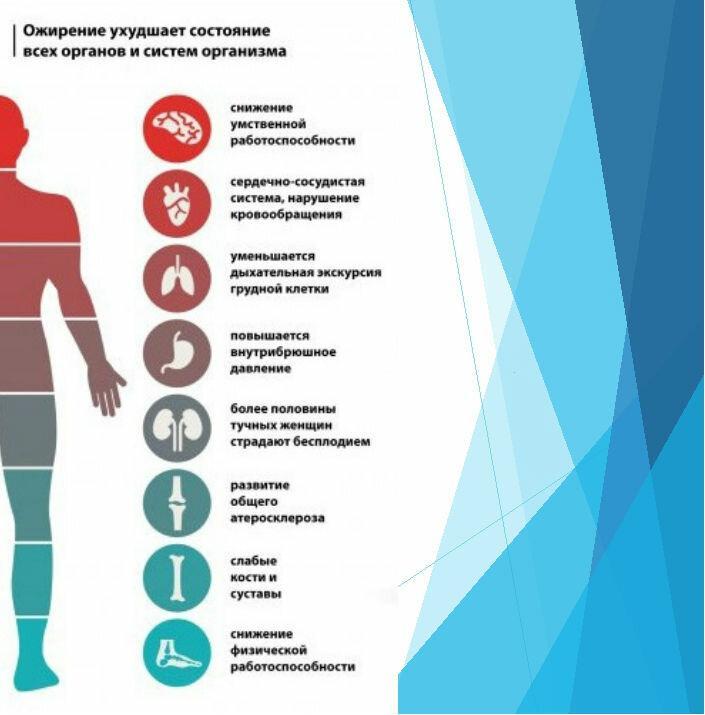 Как определить причину лишнего веса и похудеть научно доказанными способами — часть 1 - остановить старение человека