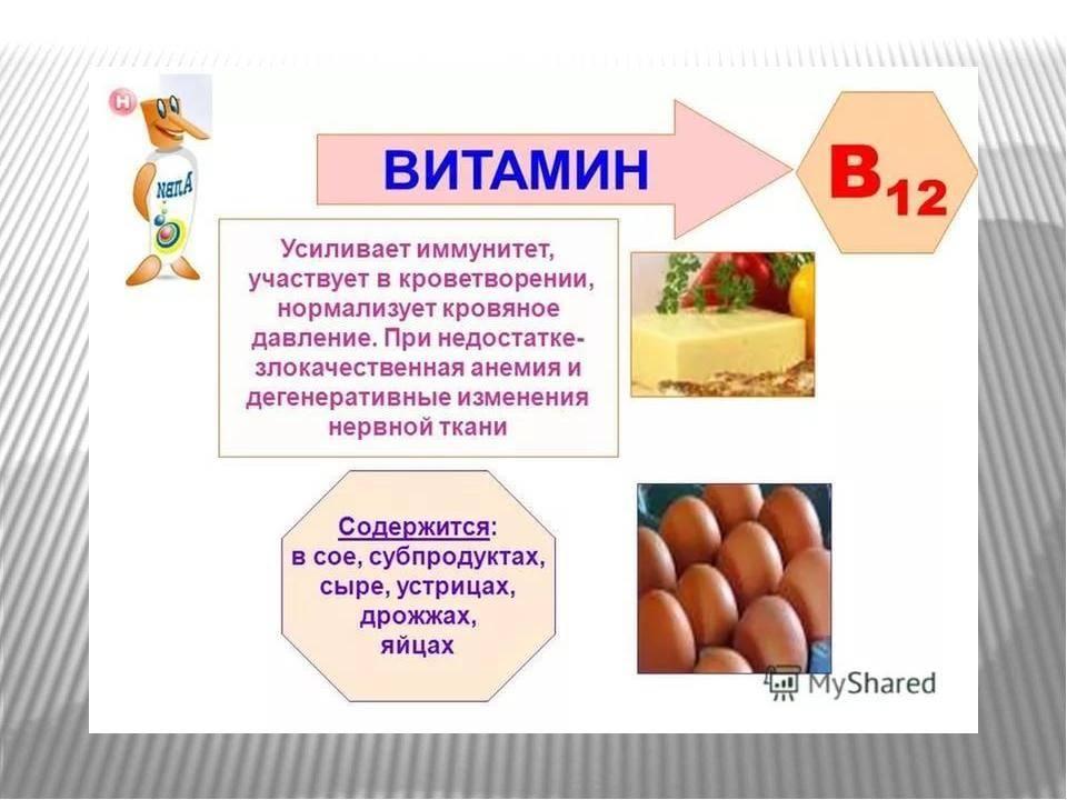 Витамин в12: для чего нужен организму, симптомы нехватки, источники | пища это лекарство