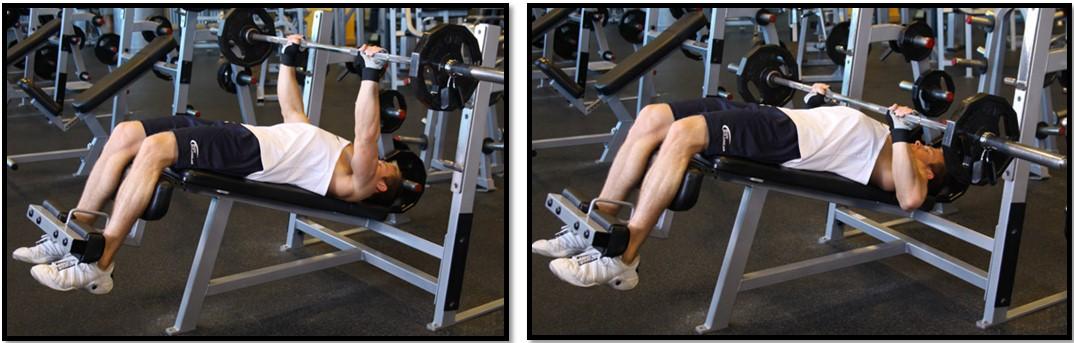 Жим штанги на наклонной скамье - проработка грудных мышц
