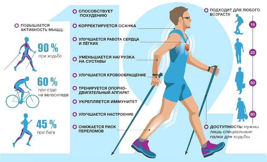 В какое время лучше заниматься физическими упражнениями для спорта и похудения