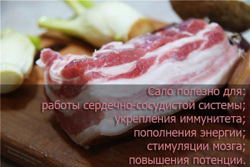 Ешьте сало регулярно – вся правда о любимом продукте :: инфониак