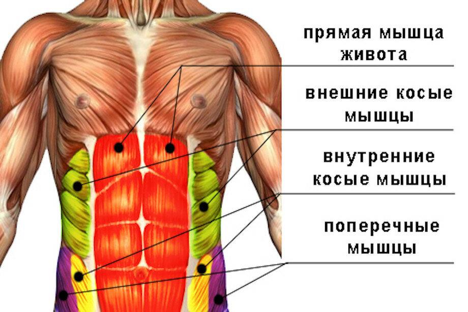 10 самых эффективных упражнений, чтобы накачать боковой пресс, комплекс на косые мышцы живота