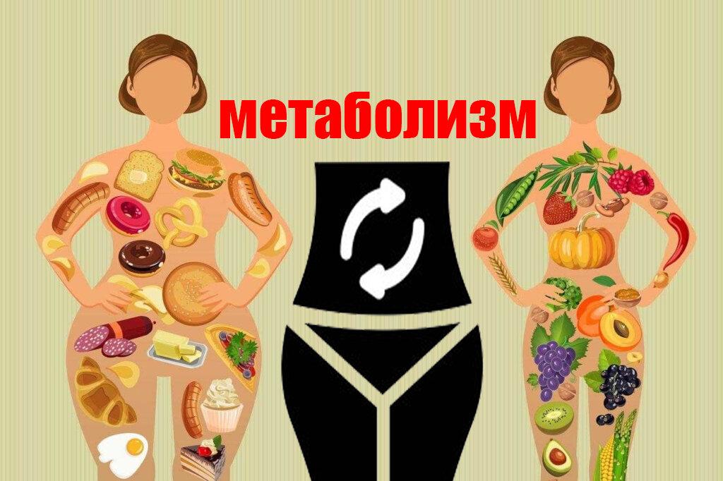 Как ускорить метаболизм? маленькие хитрости для быстрого метаболизма   гармония жизни