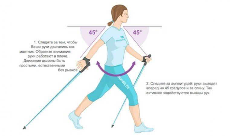 Тренажер для ходьбы - как выбрать по конструкции, производителю, функционалу и ценами