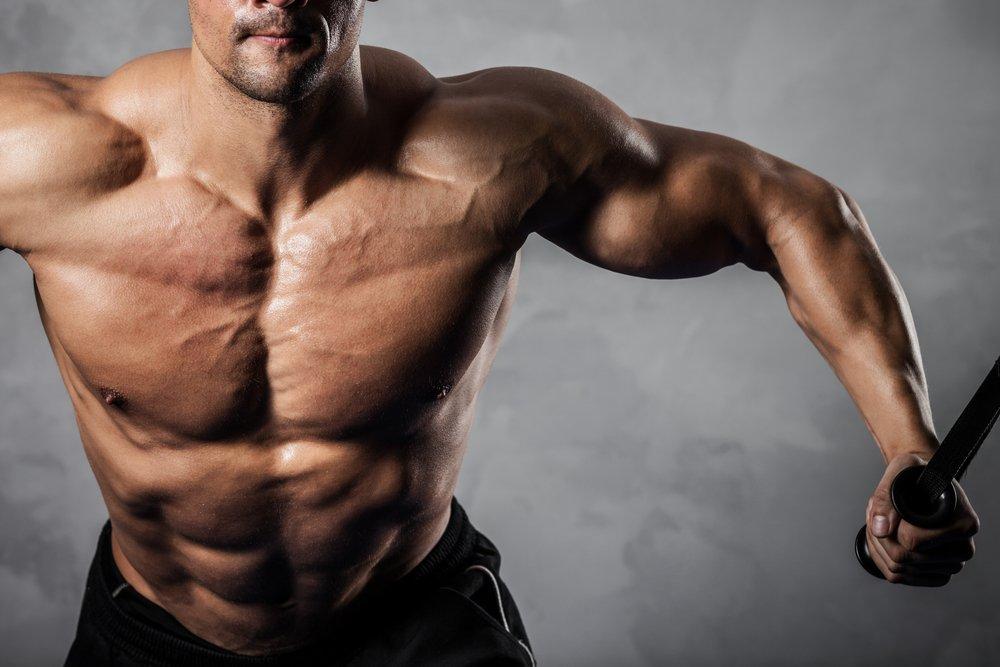 Почему ваши мышцы не растут?! - dailyfit
