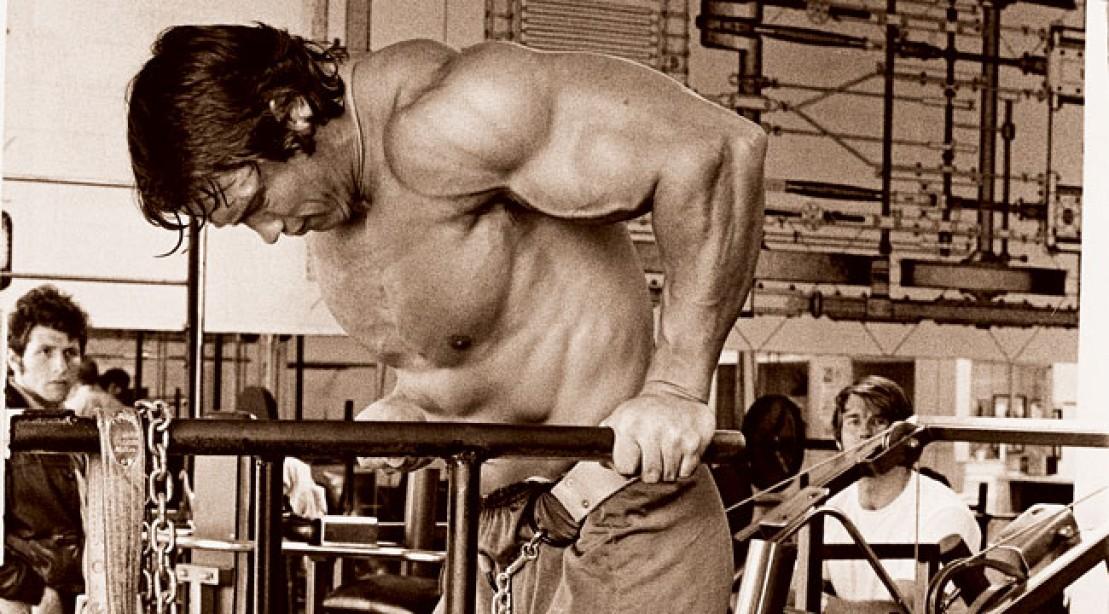 Советы от арнольда шварценеггера для эффективной тренировки: топ-5 принципов тренировок железного арни – wpf krawa