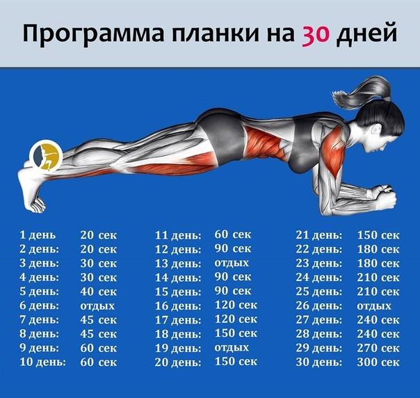 Как выполнять упражнение планка? пошаговое описание правильной техники и особенности выполнения упражнения