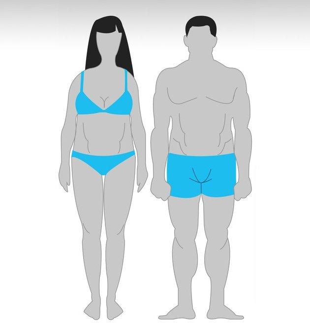 Программы тренировок для эндоморфа на похудение, рельеф и массу