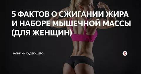Сжечь жир, а не мышцы. как сжечь жир и сохранить и нарастить мышцы | знать про все