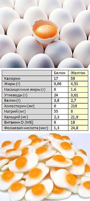 В каких продуктах содержится наибольшее количество белков, таблица