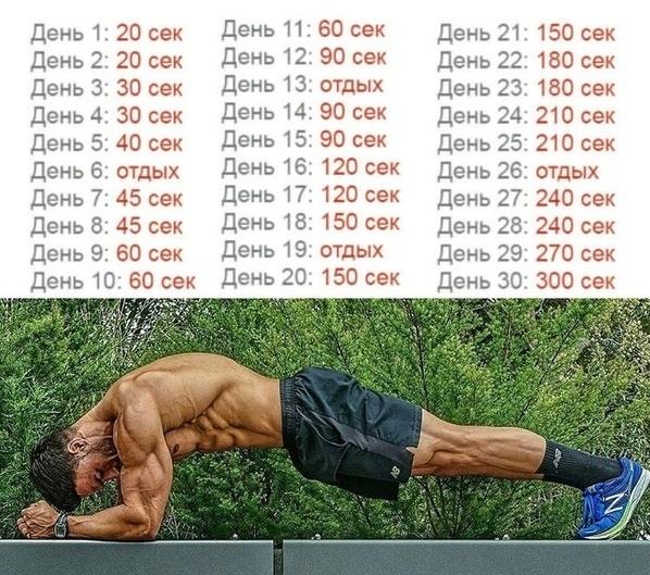 Отжимания от пола: правильная техника и 18 видов упражнения