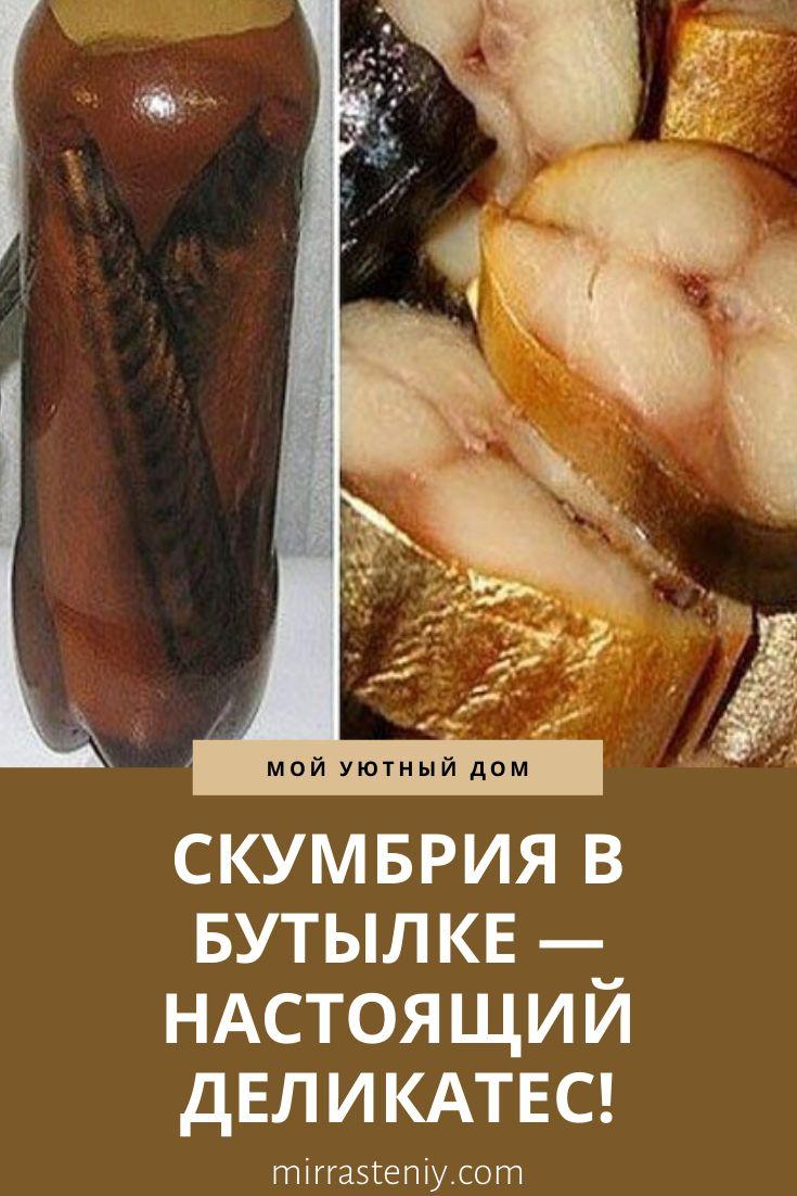 Рыбка не простая, а золотая: «копчёная» скумбрия с луковой шелухой в бутылке