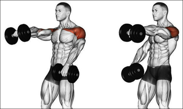 10 упражнений на плечи с гантелями в домашних условиях