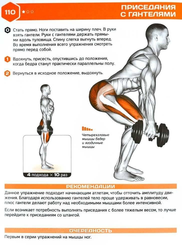 """Правильная техника выполнения упражнения """"приседания плие"""". какие мышцы работают?"""