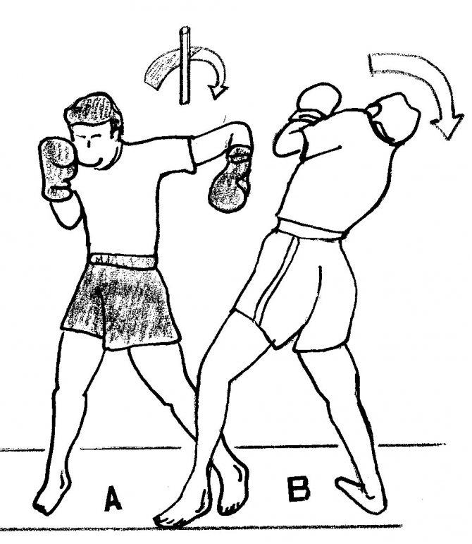 Куда правильно бить лоу-кик — техника удара и защиты
