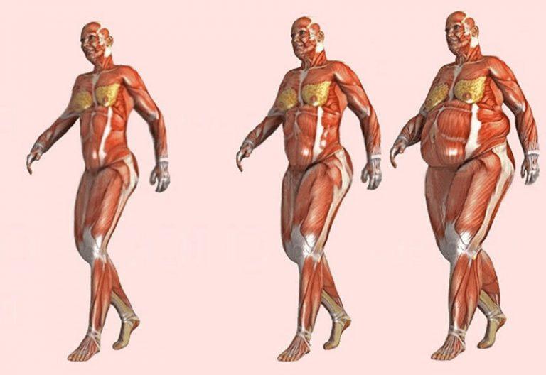 Как превратить жир в мышцы: из пухляша в качка