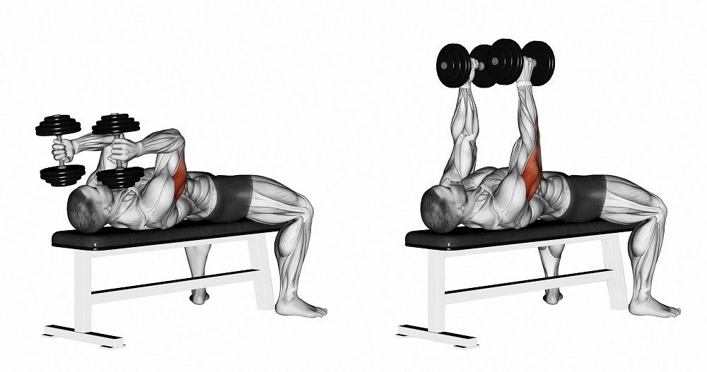 Как правильно выполнять разведение гантелей в положении лежа на скамье