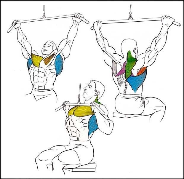 Подтягивания или тяга вертикального блока?