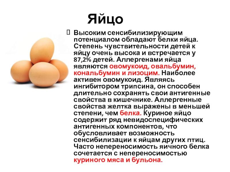 Вредно ли есть яйца каждый день и волноваться ли из-за холестерина?