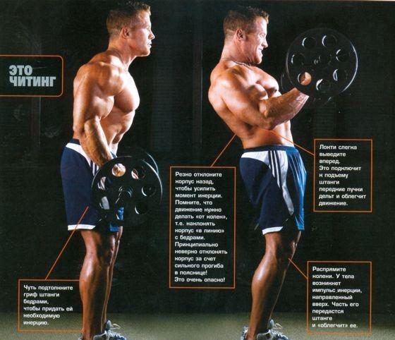 Общие принципы бодибилдинга (быстрый рост мышц в бодибилдинге)