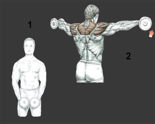 Топ-5 упражнений на плечи со штангой, чтобы накачать дельты