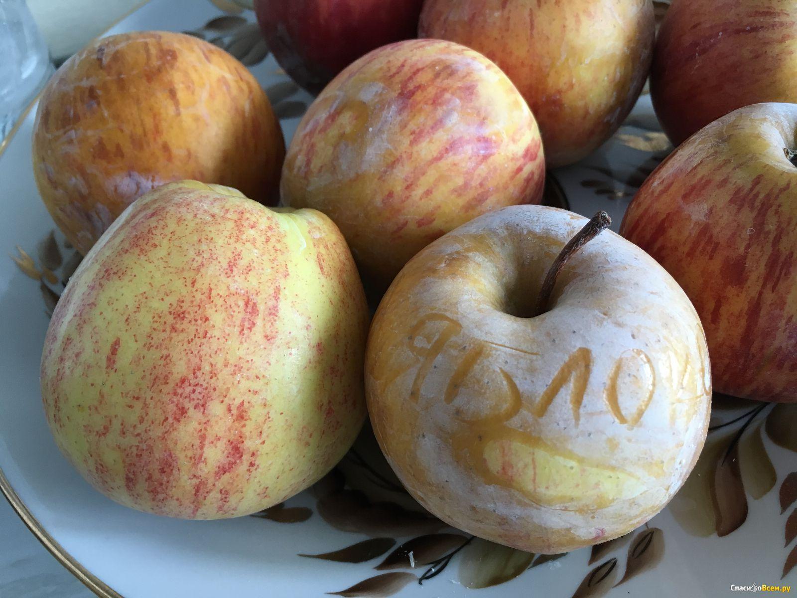 Яблоки на пару польза и вред | ваши поделки.ру |