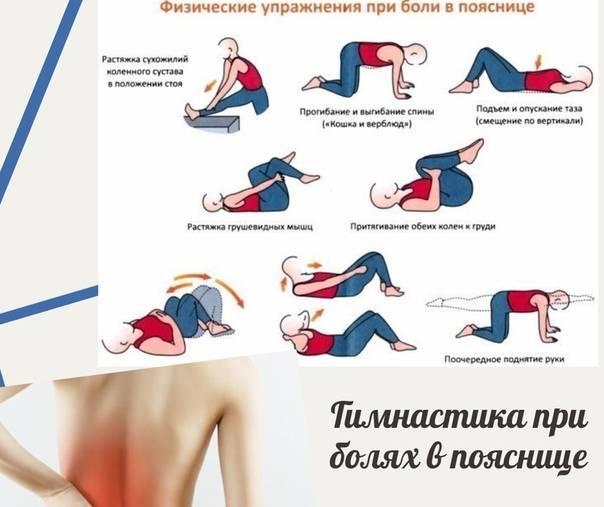 Эффективные упражнения при болях в спине и пояснице